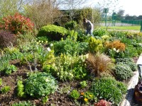 The village garden started and kept up looking beautiful by our members
