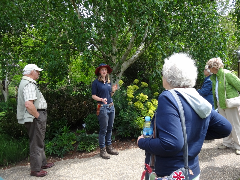 Introduction to Hilliers Gardens