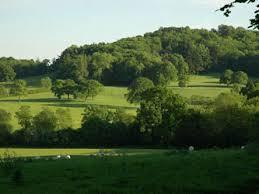 Hampshire Landscape