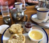 Cream teas often feature as part of garden trips...