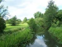 fishlake-meadows