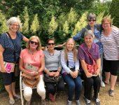Mottisfont garden visit June 2018