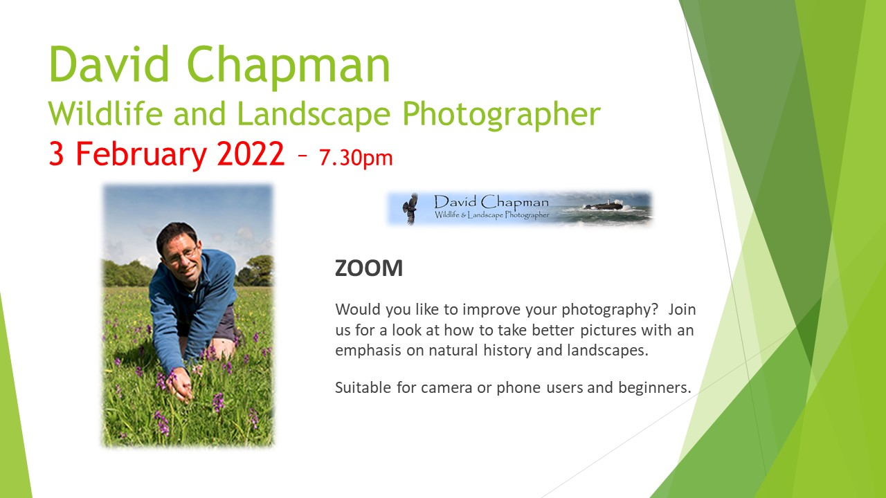 David Chapman – Wildlife Photographer