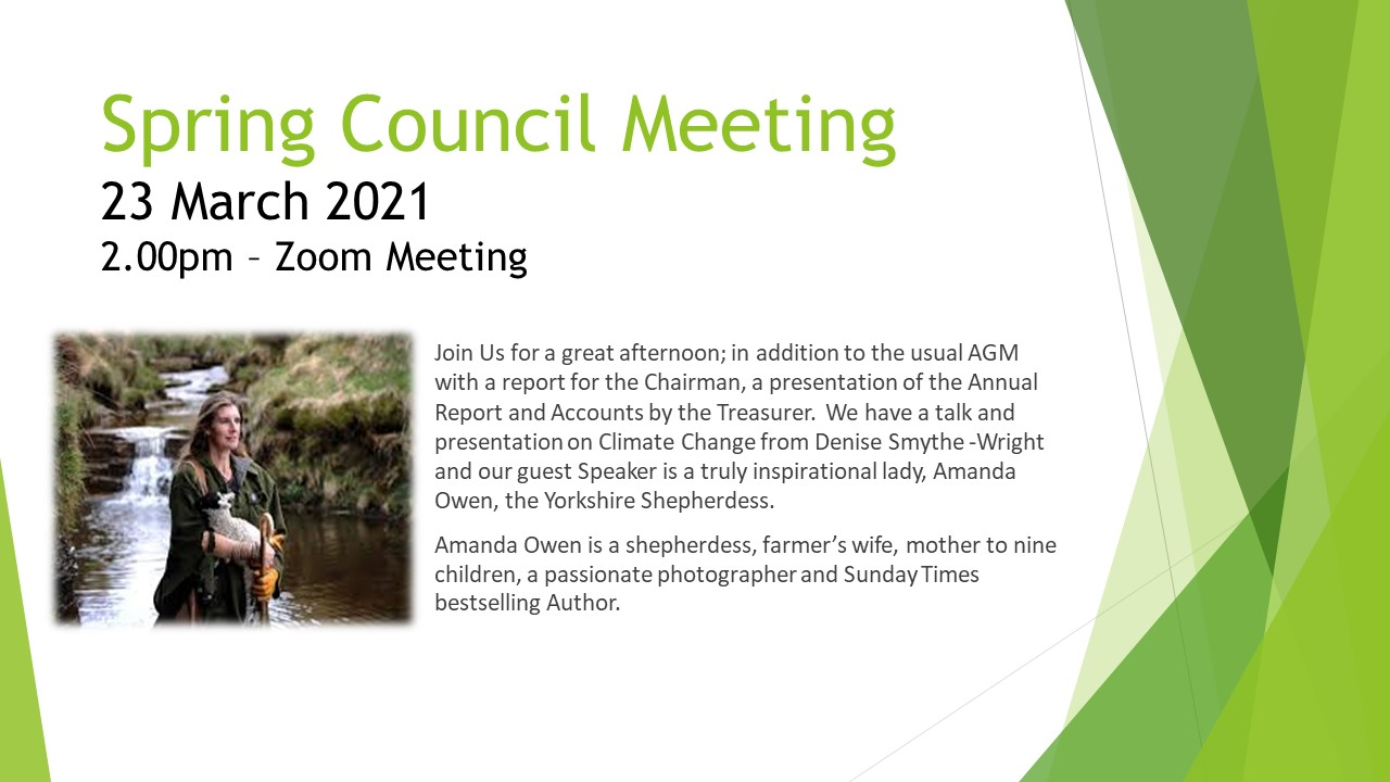 Spring Council Meeting 2021
